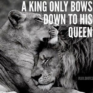 Pin By Yeukai Gumbo On Lions Pinterest Queen Quotes My Queen