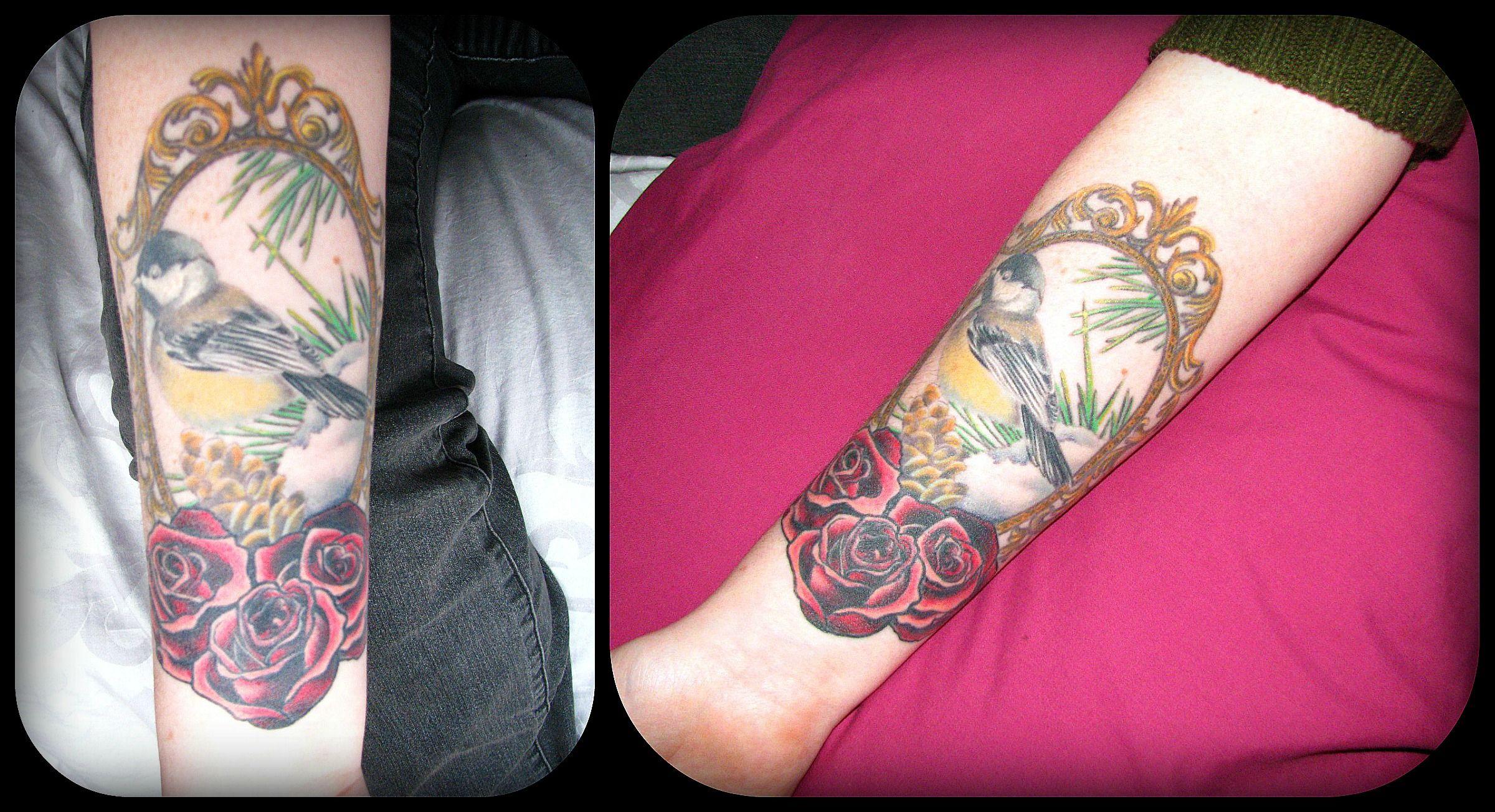 Beautiful Realistic Chickadee Tattoo By Australian Realism: My Framed Chickadee And Roses Tattoo. Forearm Piece