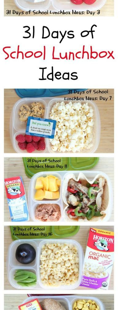 Packed Lunches for ALL Ages