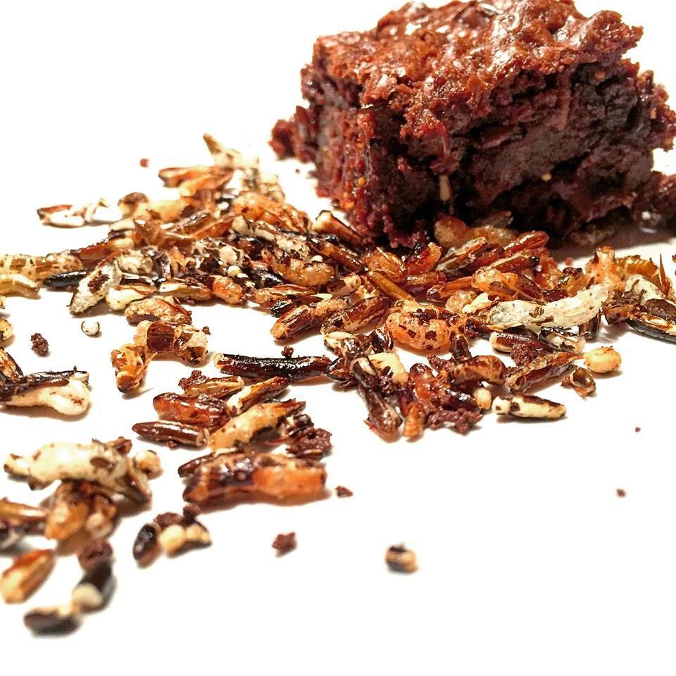 Cubes Lubriques | brownies style ganache aux figues séchées (avec riz sauvage soufflé au café de Papilles et Molécules) #valentine #ideas #chocolat #chocolate