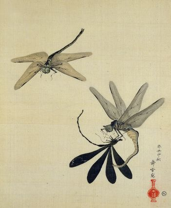 Dragonflies, from an album of Animals, Plants & Birds, by various anonymous artists. Watercolour on silk. Japan, possibly 19th century