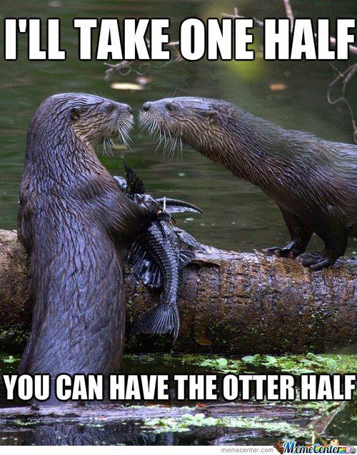 Meme Center - Largest Creative Humor Community | Otters