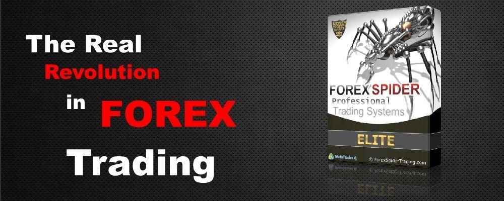 Forex Spider Metatrader 4 Mt4 Trading Systems No 1