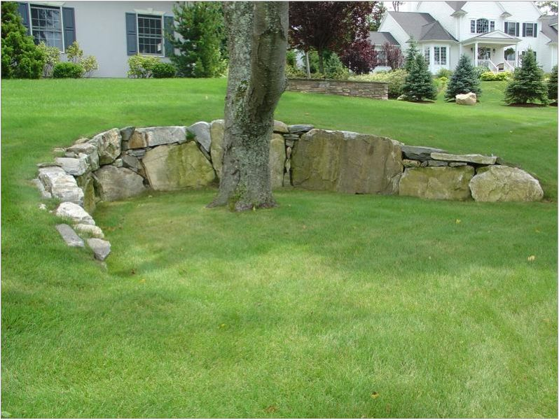 Crescent Stone Retaining Wall Preserves A Tree