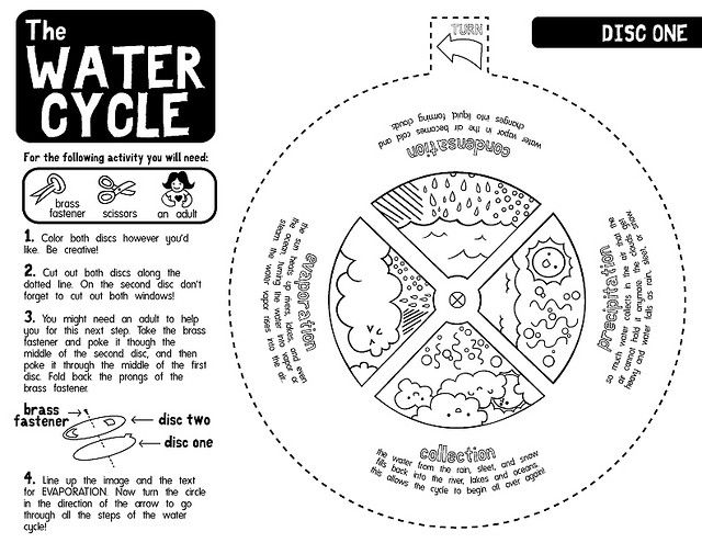 Water Cycle Worksheets B/W Worksheets, Classroom