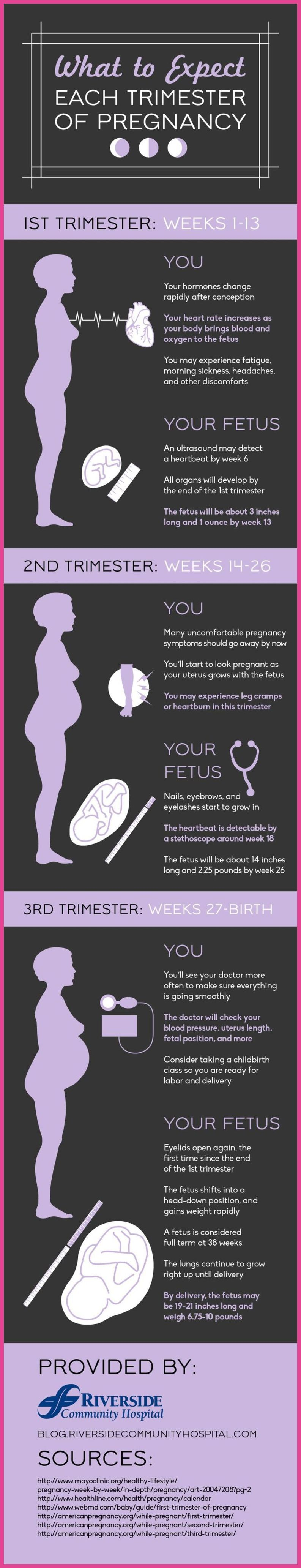 How to recognize pregnancy in the earliest terms