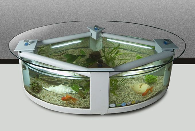 this is gonna be my future coffee table. but with cooler fish :)