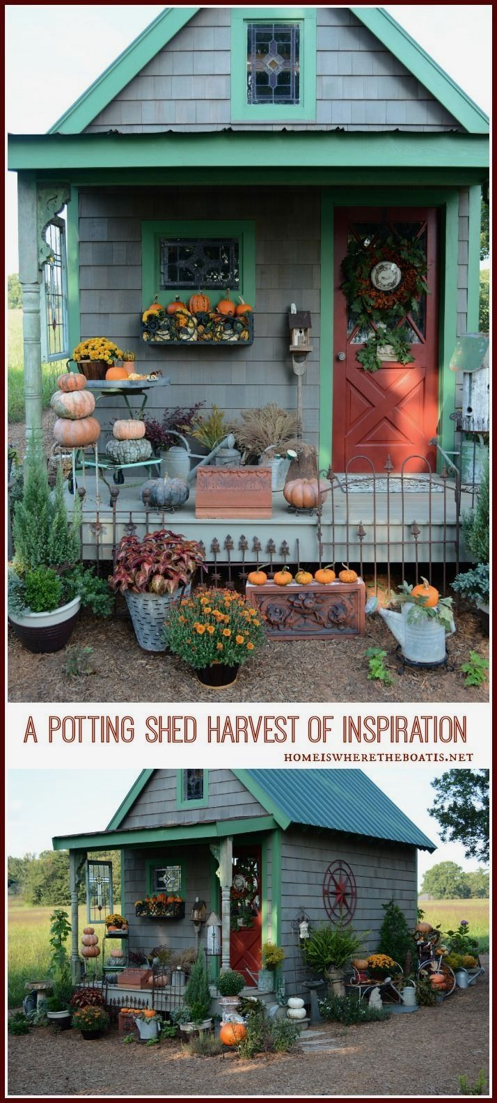 Photo of Growing a Potting Shed from the ground up with seeds of inspiration from Country…