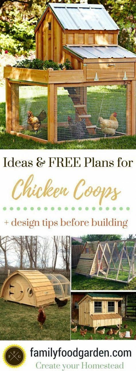 12 garden design DIY chicken coops