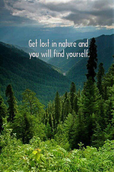 Get lost in nature & you will find yourself