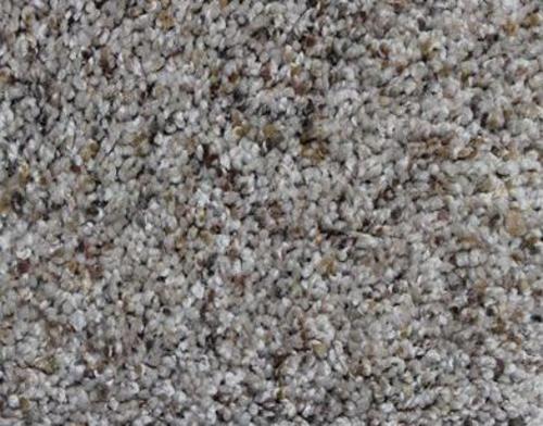 Best Pet Shield By Mohawk® Monet Plush Carpet 12 Ft Wide At 400 x 300