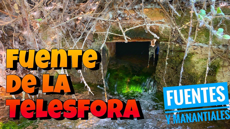 En Busca De La Telesfora Un Nacimiento Del Guadiana Ruidera Treasures Parques Naturales Arroyo Fuentes
