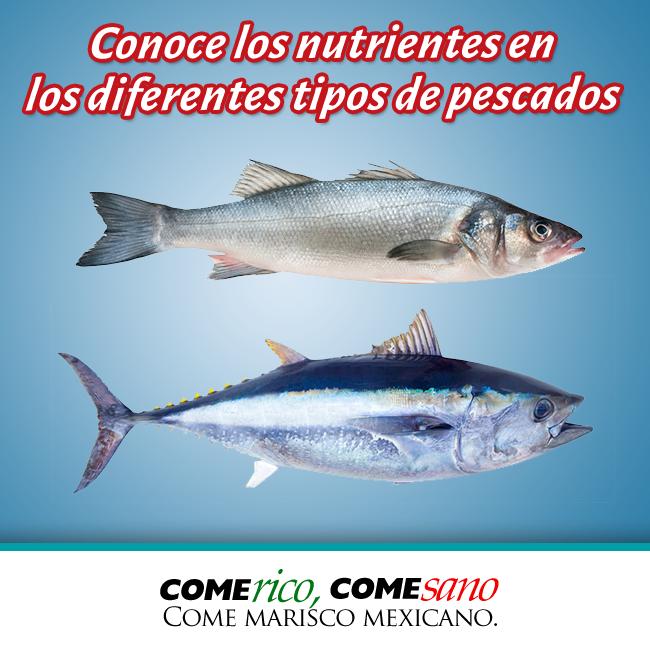Dieta del pescado azul
