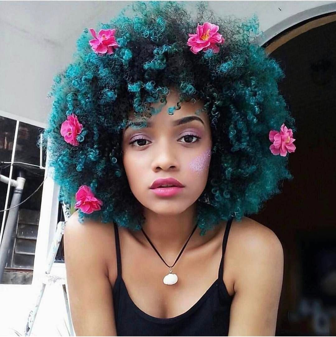 Brilliant Bush Natural Hair Styles Dyed Natural Hair Curly Hair Styles