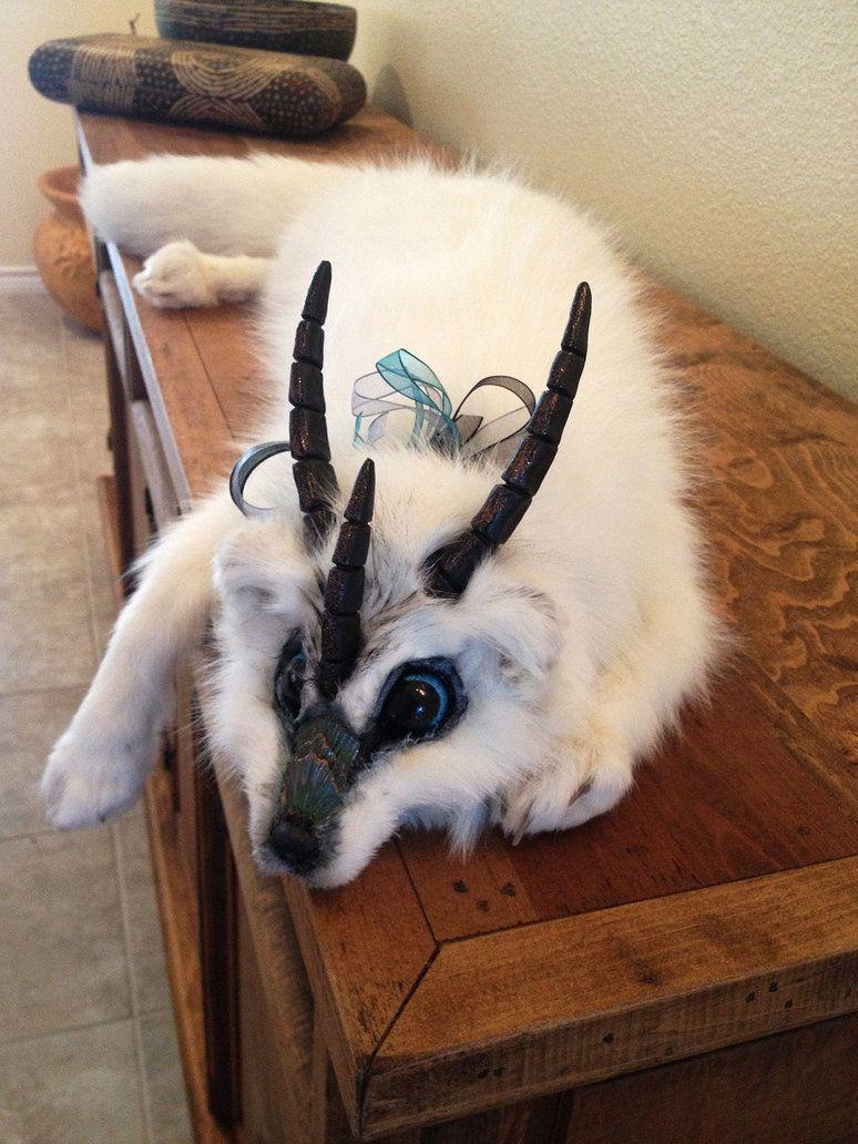Baby inari fox for sale - Fantasy Tundra Fox Plush By Darkangellord69 On Deviantart
