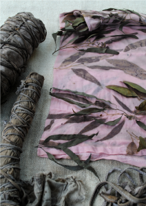 Eco-printing with eucalyptus leaves: how to eco-print on cotton ebook by gumnut magic