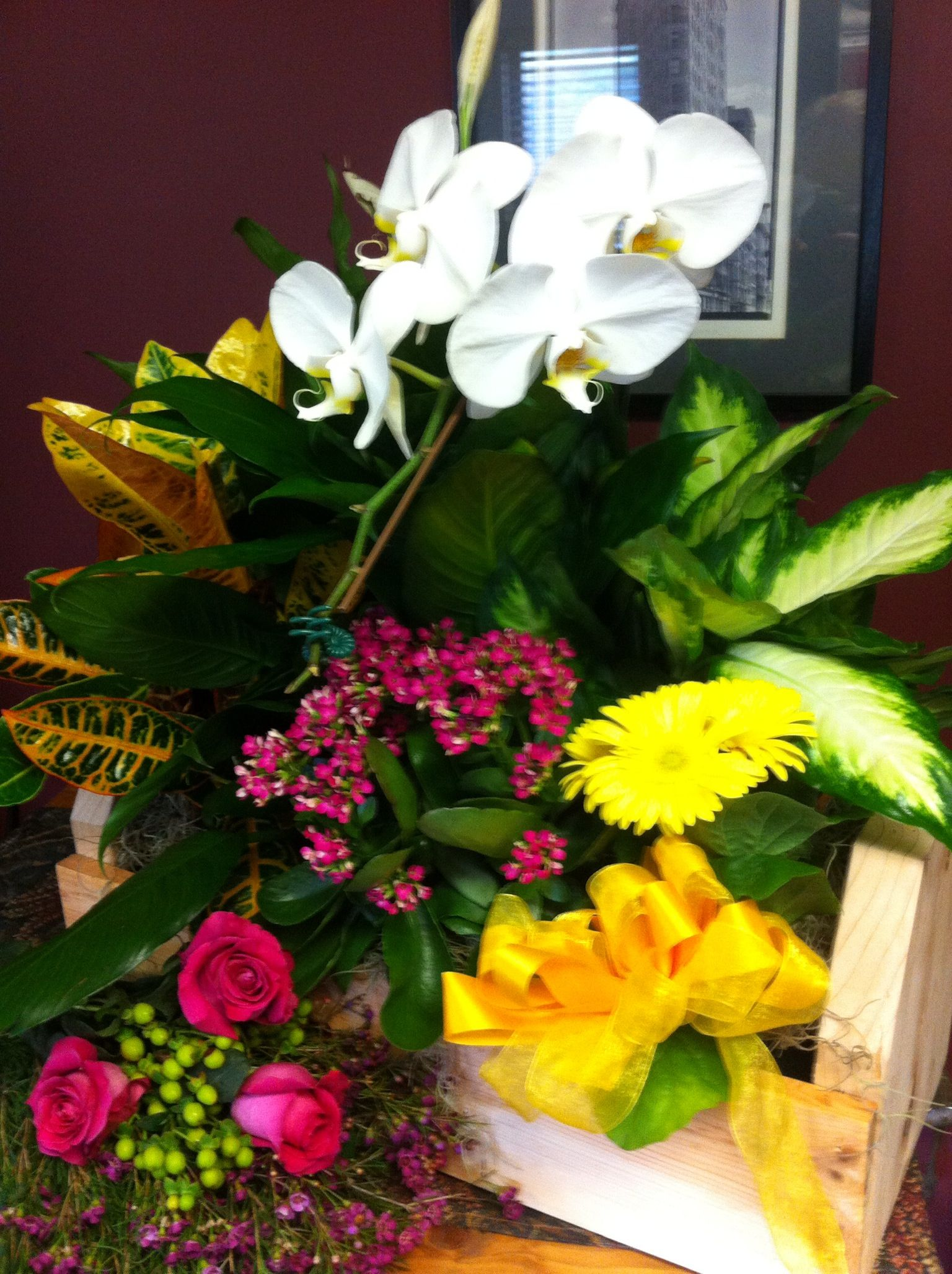 Box of blooms plants bloom garden landscaping
