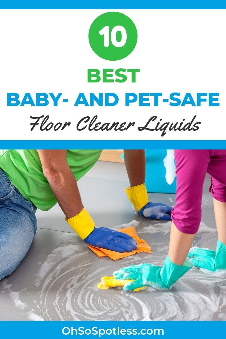 mr clean pet safe
