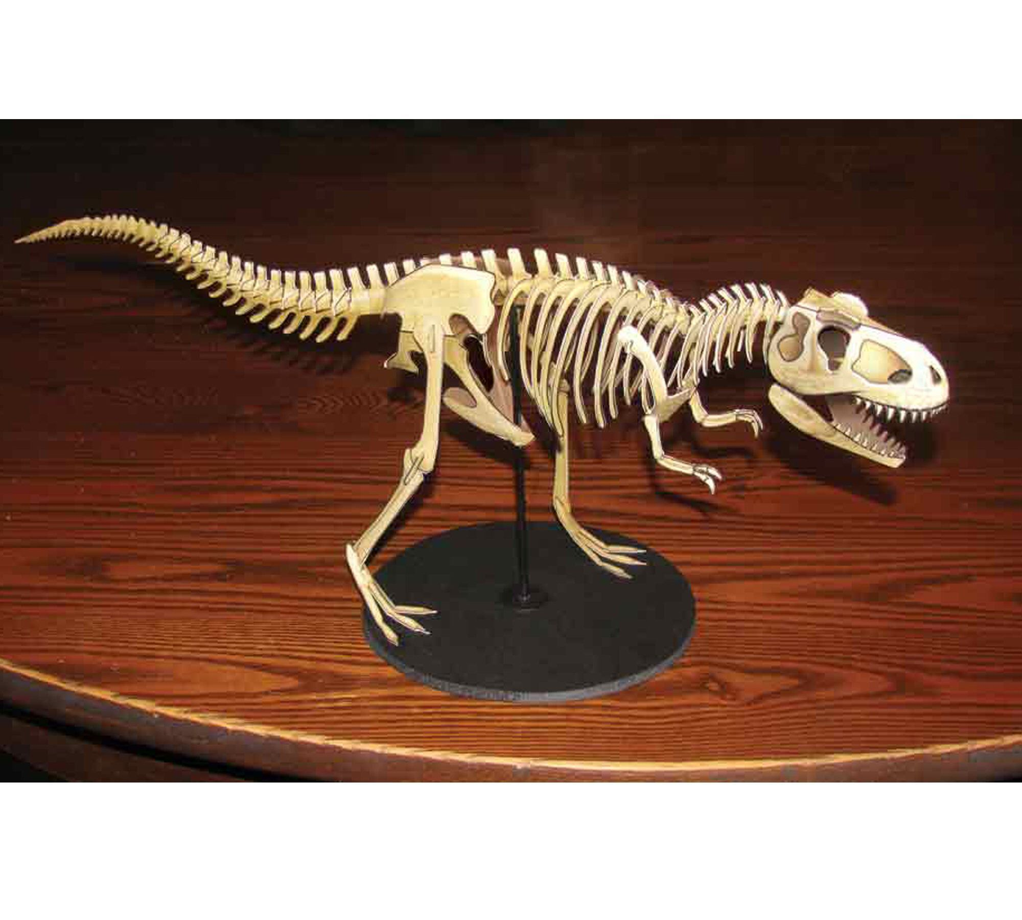 T-Rex, T-Rex skeleton, paper dinosaur model, papercraft dinosaur #historyofdinosaurs Excited to share the latest addition to my #etsy shop: T-Rex, T-Rex skeleton, paper dinosaur model, papercraft dinosaur #historyofdinosaurs T-Rex, T-Rex skeleton, paper dinosaur model, papercraft dinosaur #historyofdinosaurs Excited to share the latest addition to my #etsy shop: T-Rex, T-Rex skeleton, paper dinosaur model, papercraft dinosaur #historyofdinosaurs