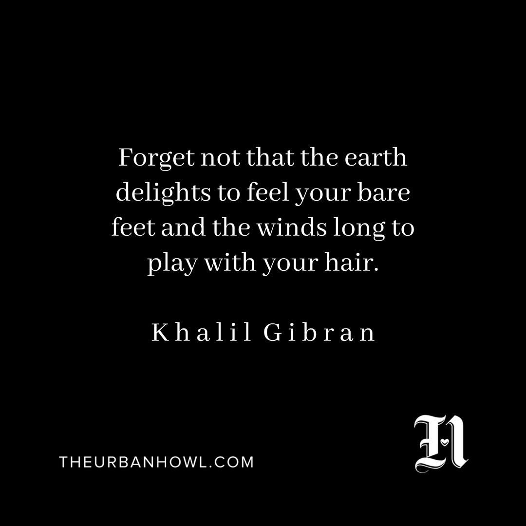 """ Forget not that the earth delights to feel your bare feet and the winds long to play with your hair."" ÷ K h a l i l G i b r a n . . . #wakeupanddream"