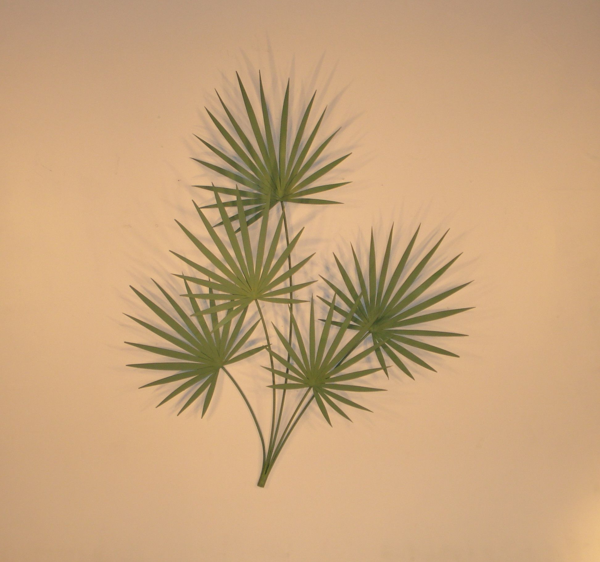 Chinese Palm\' Tropical Metal Wall Sculpture | Products | Pinterest ...