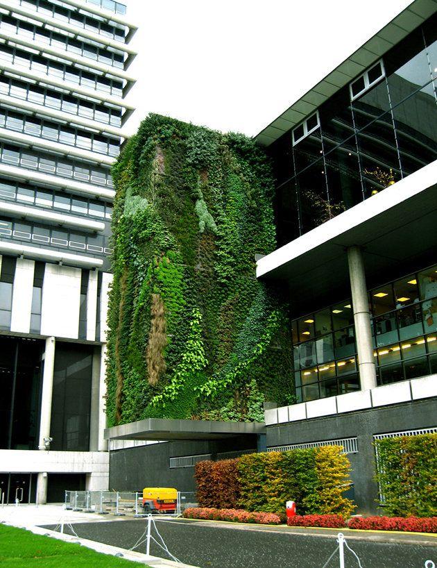 Hotel d partement hauts de seine nanterre vertical - Giardino verticale madrid ...
