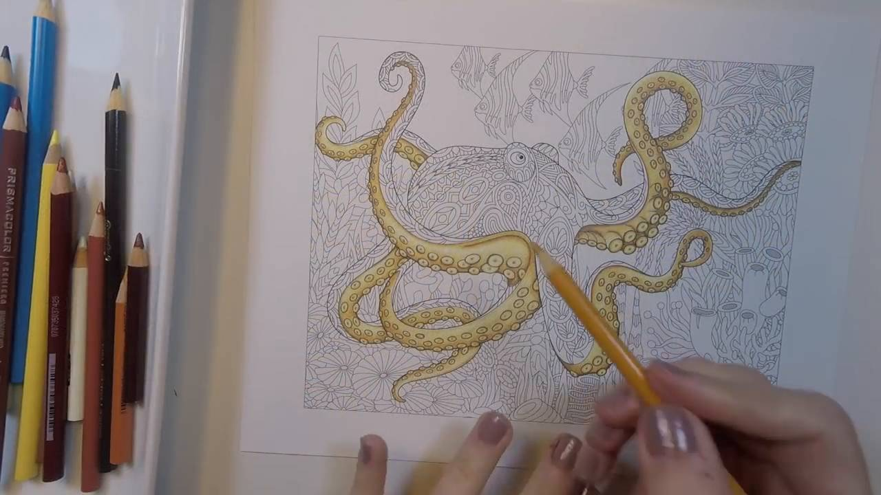 Creating A 3d Octopus Coloring Book Cafe Book Cafe Coloring Books Coloring Tips