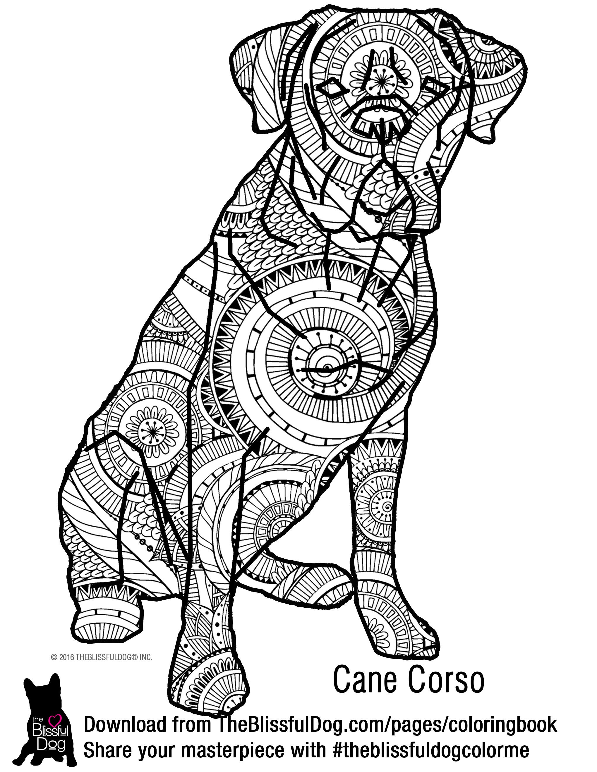 Coloring book dog breeds maltese and dachshunds this imposing cane corso is ready for your artistic abilities to flow color him geenschuldenfo Images