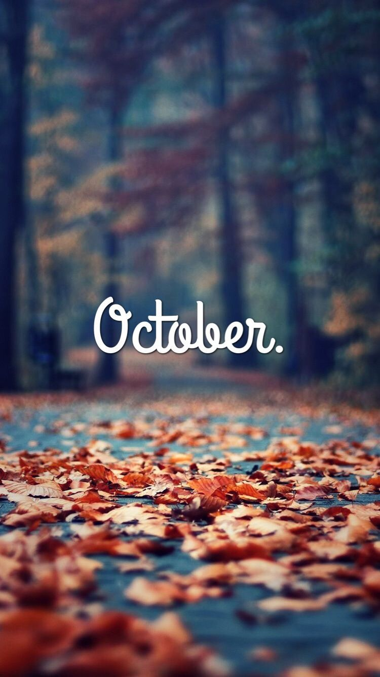 October fall wallpaper #iphone #fall #october #wallpaper #octoberwallpaperiphone October fall wallpaper #iphone #fall #october #wallpaper #fallwallpaperiphone