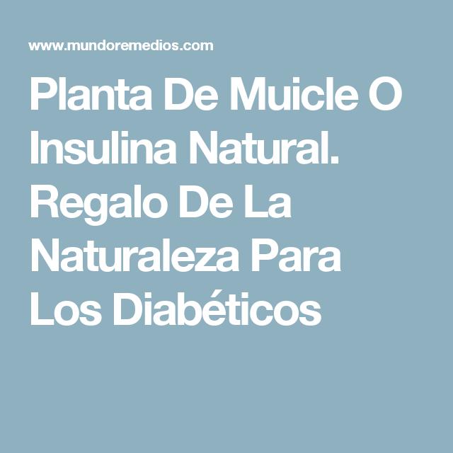 Pastillas para diabetes para bajar de peso