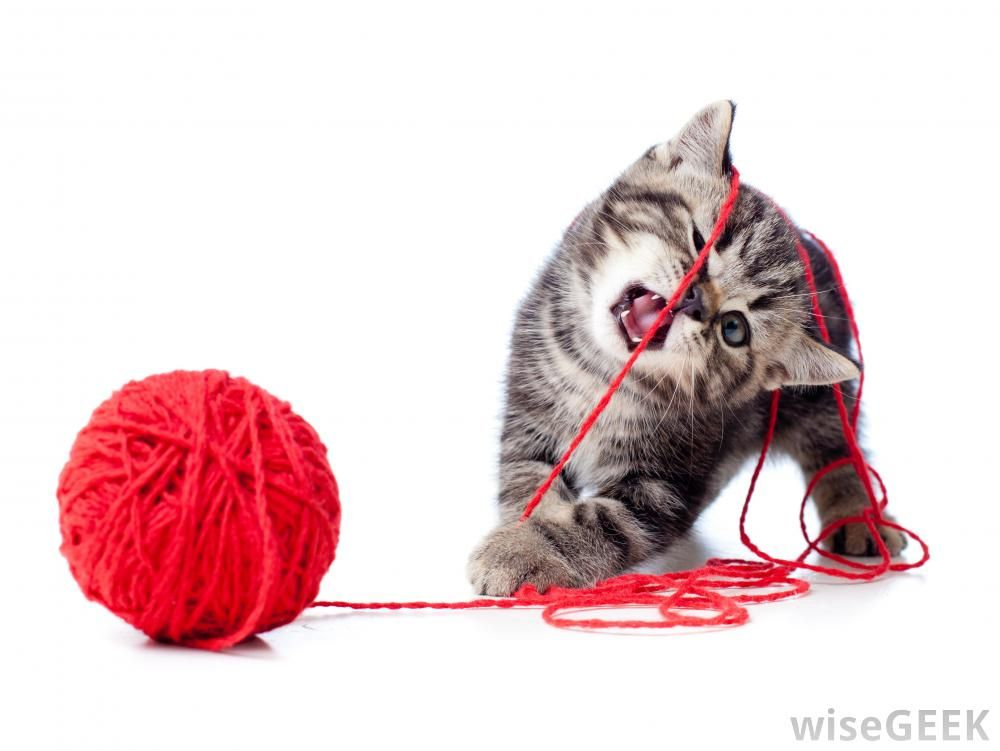 Yarn Toys For Cats