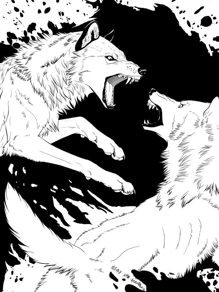 Photo of Rage – Wolf Fight by akeli on DeviantArt