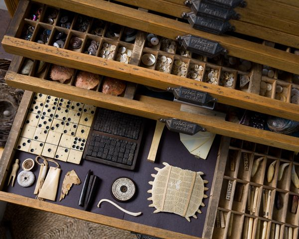 drawers, tools, collections.
