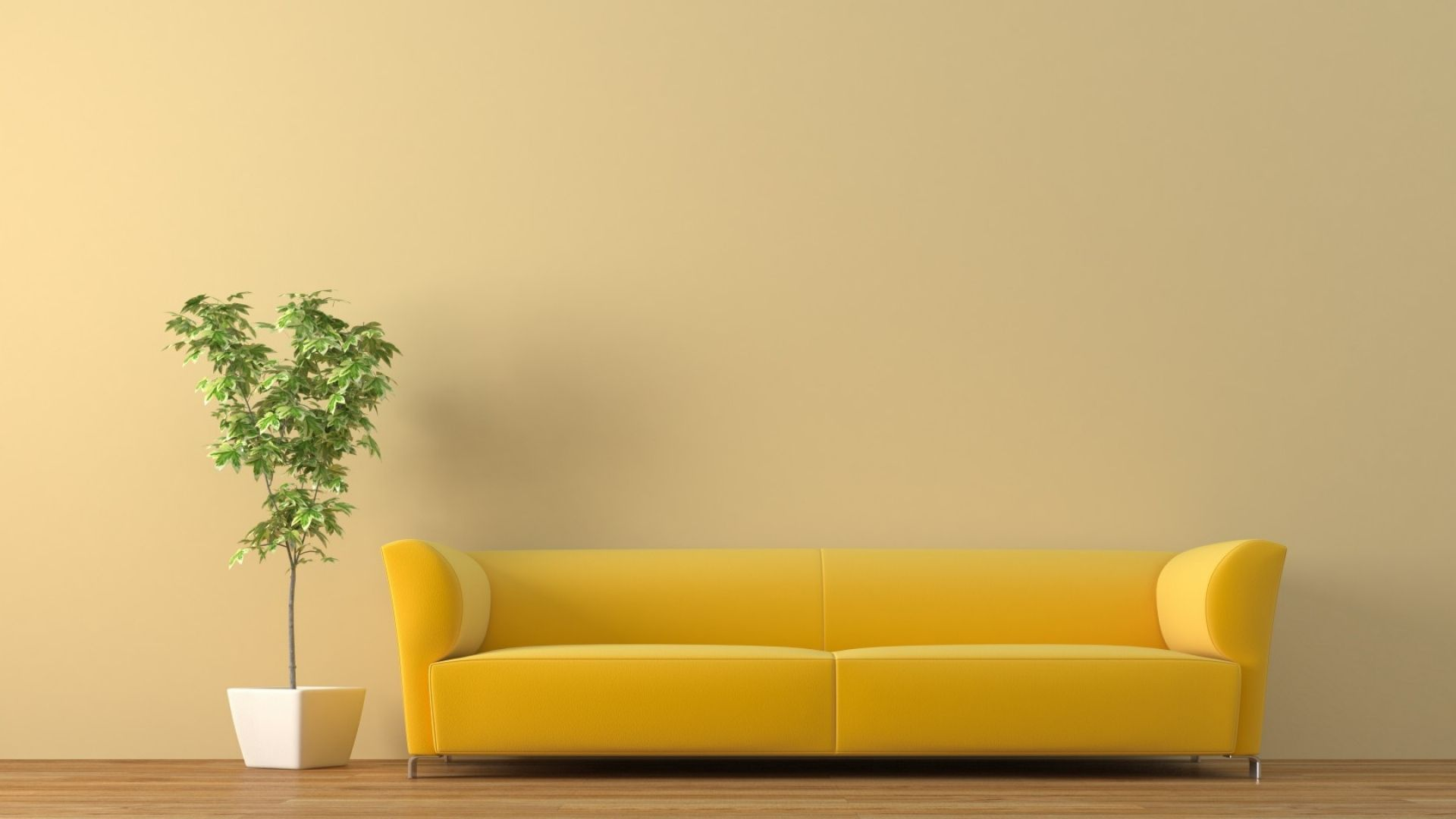 6x6 Wallpaper sofa, tub, plant  Yellow sofa design, Sofa