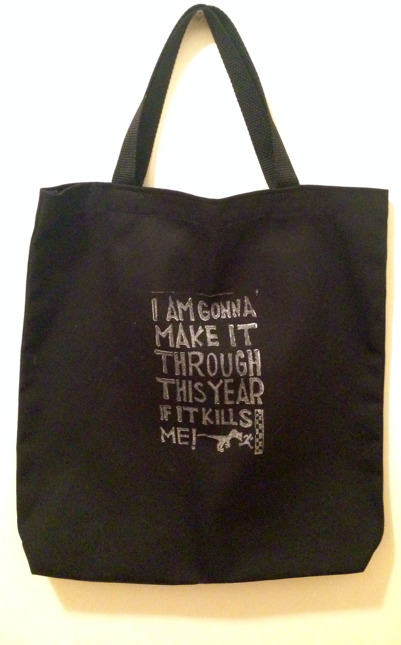 I am gonna make it through this year if it kills me - the tote, song lyrics by the mountain goats