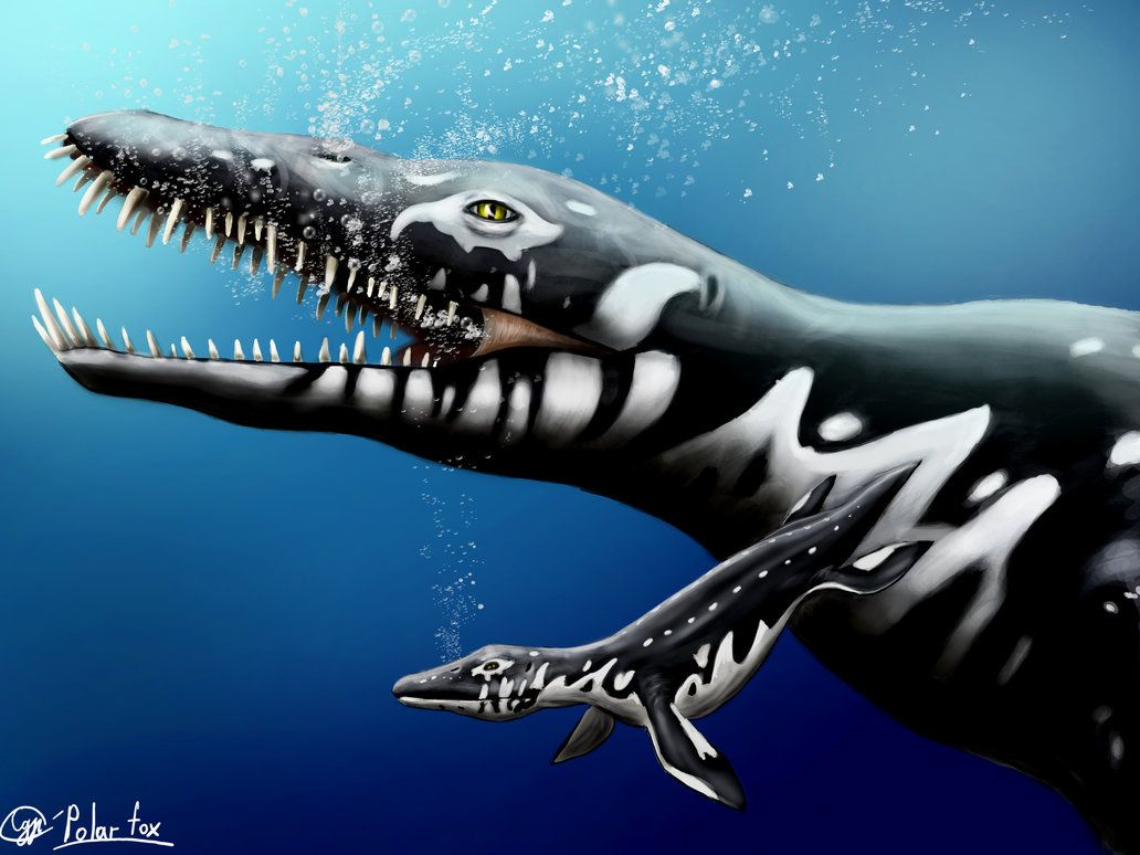 Liopleurodon and the child by SvPolarFox.deviantart.com on ...