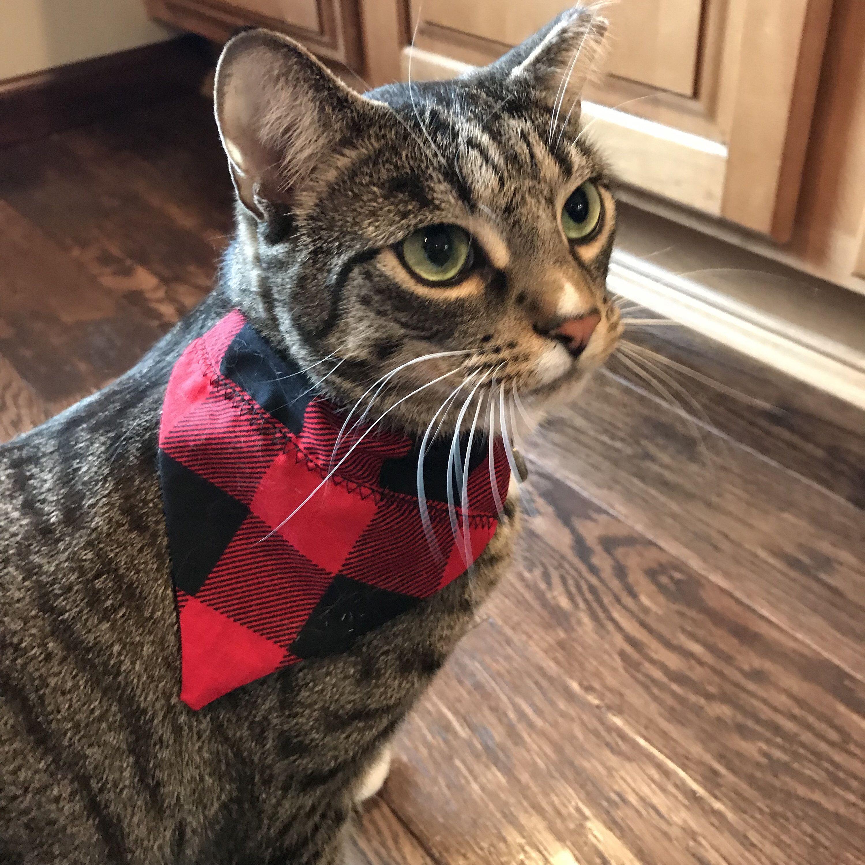 Cat Bandana / Plaid / Small Pet Bandana / Over the Collar