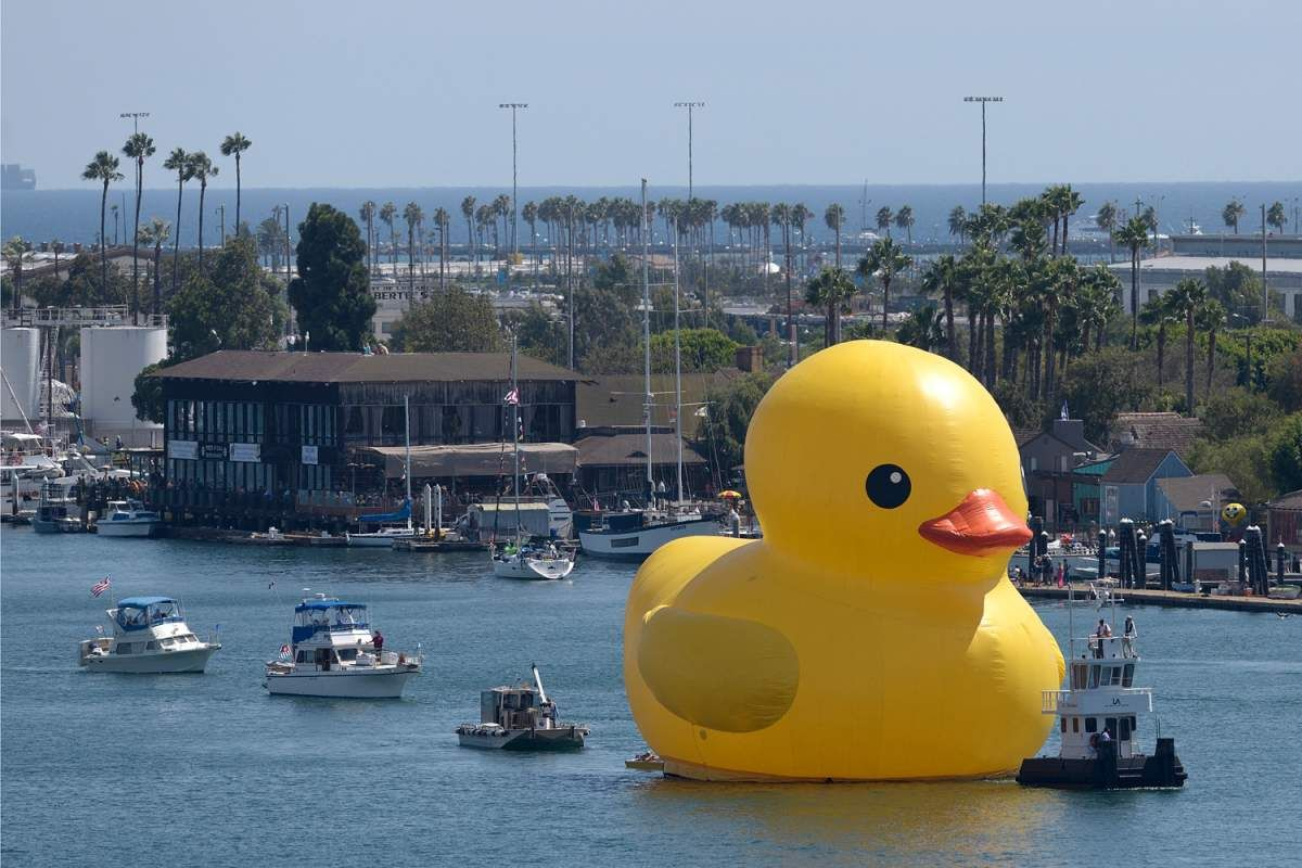 Now There S A 61 Foot Tall Rubber Duck In Los Angeles In 2020 Rubber Duck Duck Rubber Ducky
