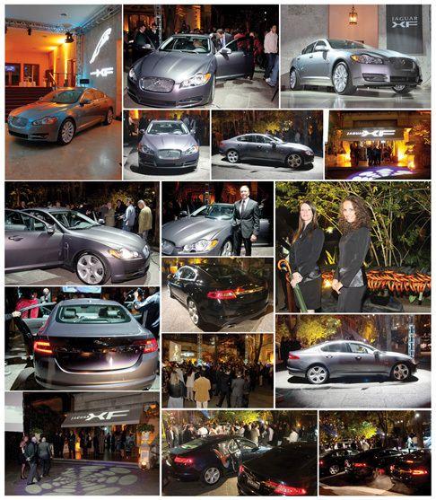 Jaguar #05