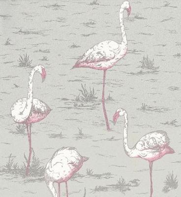 Flamingo Wallpaper, For the bathroom!!