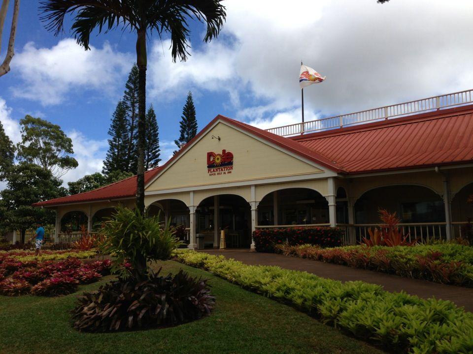 Pineapple paradise Hawaii tours, Oahu, Hawaii