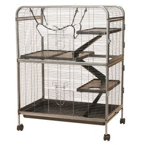 All Living Things Small Animal Home Cages Petsmart Small Pets Dog Bedroom Petsmart