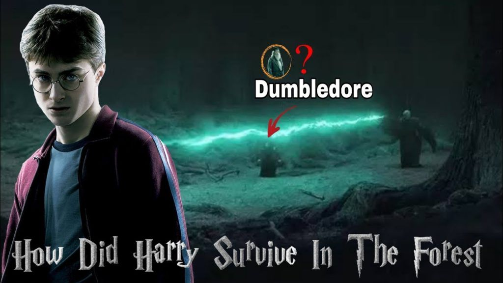 How Did Harry Potter Survive In The Forbidden Forest Hindi