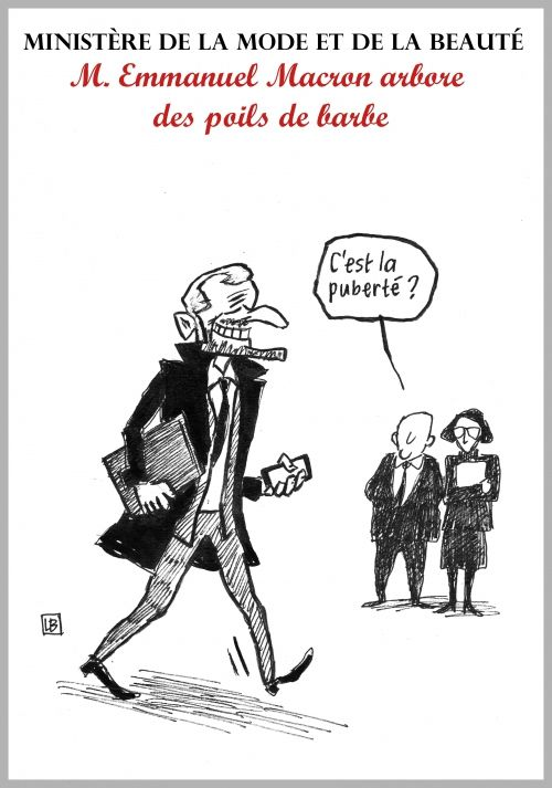 Image result for dessin emmanuel macron et l'art
