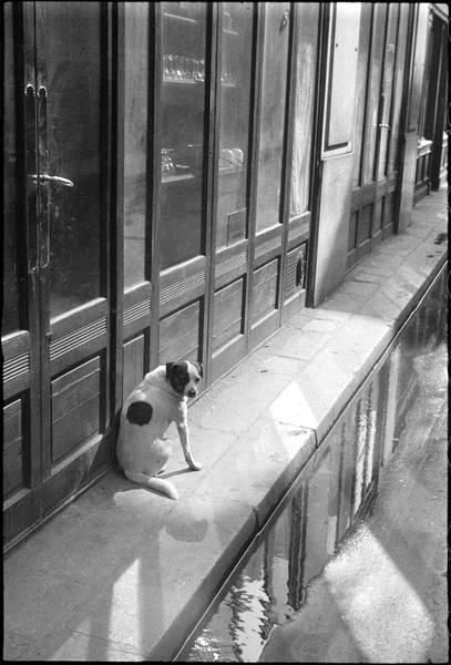 Mimbeau Andre Kertesz Cool Photos French Photographers