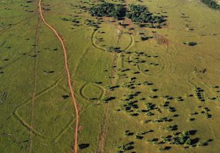 Vs wordpress vip building society civilization and discovery astonishing ancient amazon civilization discovery detailed the geoglyphs are an astonishing discovery sciox Image collections