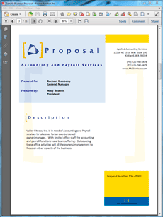 Accounting And Payroll Services Proposal  Create Your Own Custom