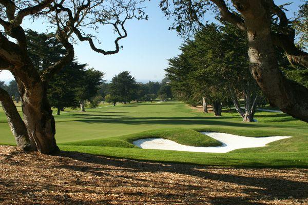 14+ Black horse golf course green fees info