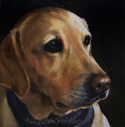 Saffron - Labrador Retriever dog oil painting -- Anne Zoutsos
