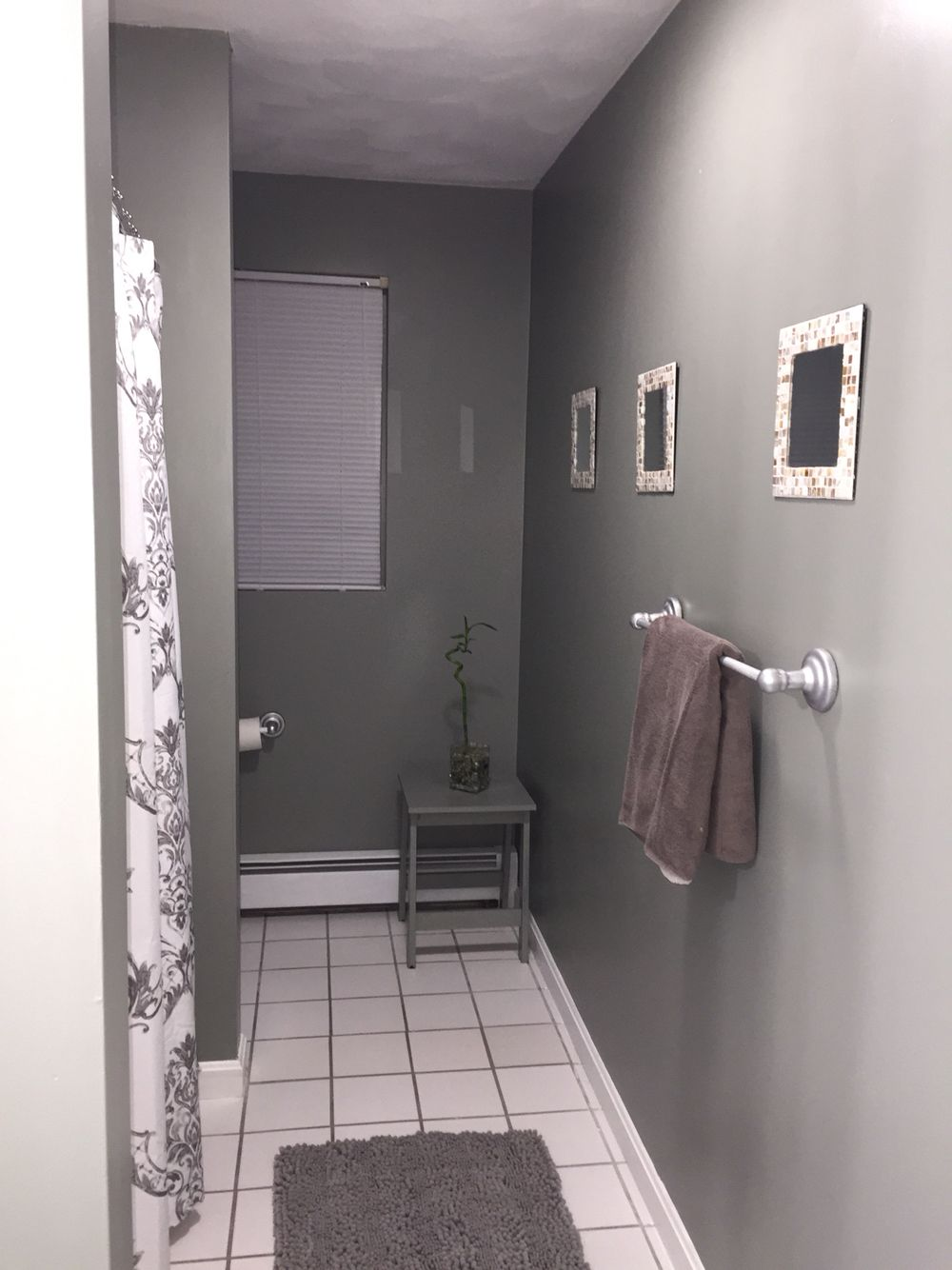 Sherwin Williams Rare Gray Bathroom Terri S Color In Her New Bathroom Home Design Decor Grey Bathrooms Beautiful Bathrooms